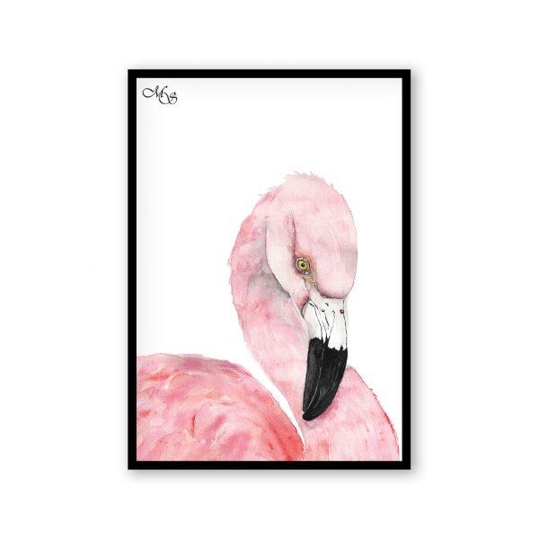 Dieren poster Fleur de flamingo