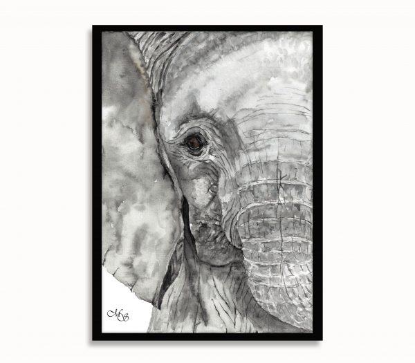 Dieren poster Olivia de olifant