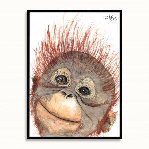 Dieren poster Abel de aap