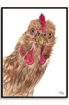 Dieren poster Polly de kip
