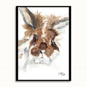 Dieren poster Kiki het konijn