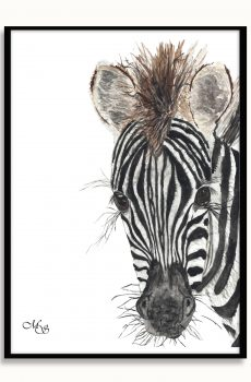 Dieren poster Zaza de zebra