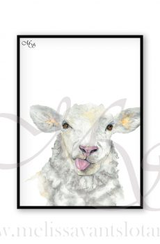 Dieren poster Sep het schaap