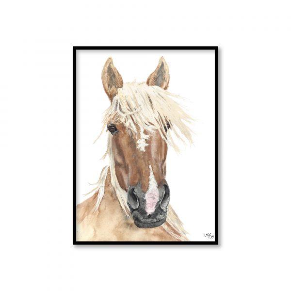 dieren poster Pelle het paard