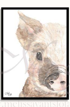 dieren poster Viggo het varken